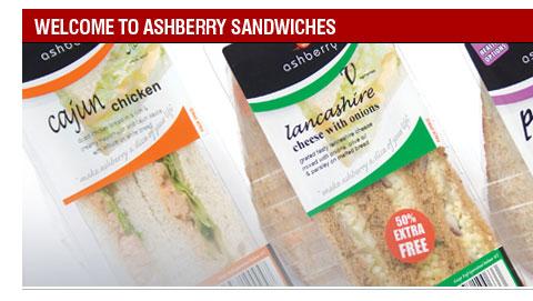 Copywriting sandwich company